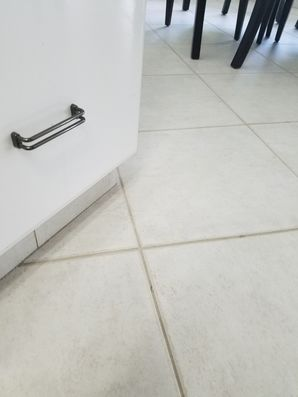 Tile & Grout Cleaning in Fort Lauderdale, FL (2)