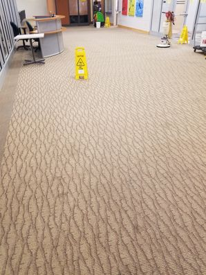 Before & After Commercial Carpet Cleaning in Fort Lauderdale, FL (3)