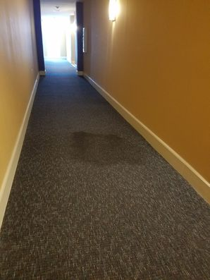Before, During & After Commercial Carpet Cleaning in Plantation, FL (1)