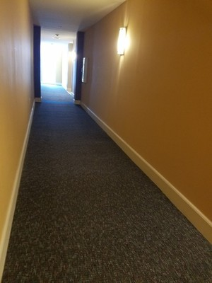 Before, During & After Commercial Carpet Cleaning in Plantation, FL (3)
