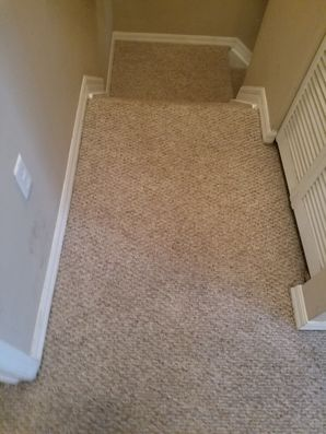 Before & After Carpet Stain Removal in Hollywood, FL (2)