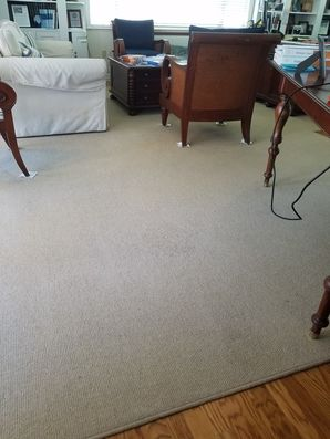 Before & After Carpet Stain Removal in Fort Lauderdale, FL (2)