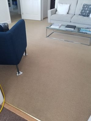 Before & After Carpet Cleaning in Fort Lauderdale, FL (2)