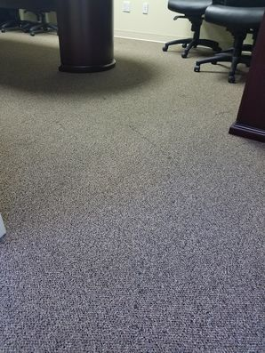 Carpet Cleaning in Tamarac, FL (1)