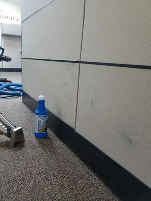 Before & After Cubicle Upholstery Cleaning Fort Lauderdale, FL (1)