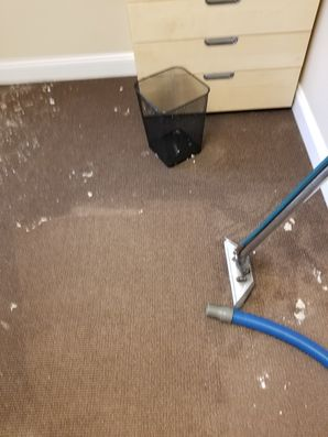 Water Damage Restoration in Davie, FL (1)