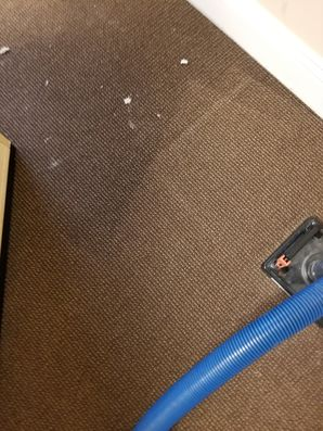 Water Damage Restoration in Davie, FL (2)