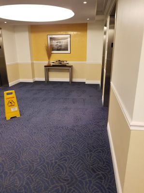 Commercial Carpet Cleaning in Pompano Beach, FL (2)