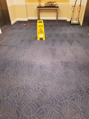 Commercial Carpet Cleaning in Pompano Beach, FL (3)