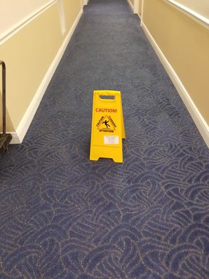 Commercial Carpet Cleaning in Pompano Beach, FL (4)