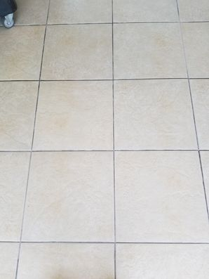 Tile and Grout Cleaning in Wilton Manors, FL (1)