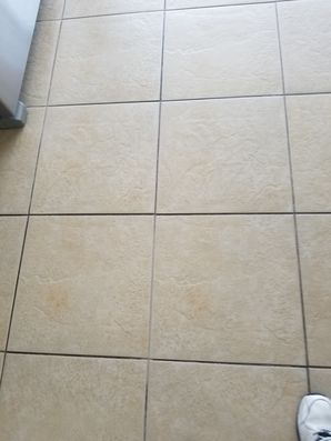 Tile and Grout Cleaning in Wilton Manors, FL (2)