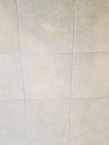 Tile and Grout Cleaning in Wilton Manors, FL (3)