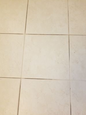 Before & After Tile and Grout Cleaning in Palm Beach, FL (1)