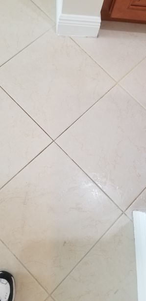 Before & After Tile & Grout Cleaning in Pompano Beach, FL (1)
