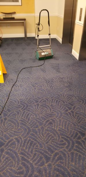 Dry Commercial Carpet Cleaning in Fort Lauderdale, FL (1)