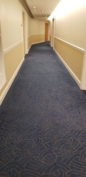 Dry Commercial Carpet Cleaning in Fort Lauderdale, FL (3)