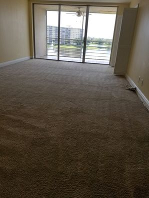 Before & After Carpet Cleaning in Pompano Beach, FL (5)
