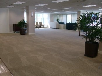 Commercial Carpet Cleaning in Fort Lauderdale, FL