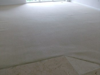 Before and After Carpet Cleaning in a high rise building